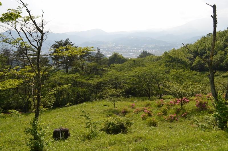 自然-大萩山_001