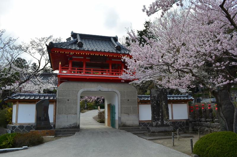 歴史・文化-常林寺_001