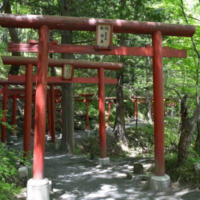 萬蔵稲荷神社 夏の様子
